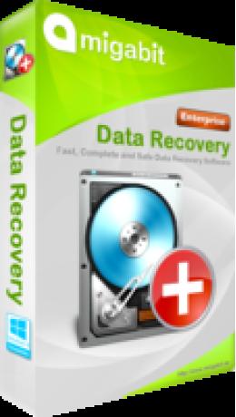 Entreprise de récupération de données Amigabit