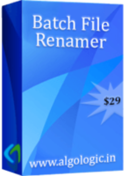 Batch File Renamer (5 Years License)