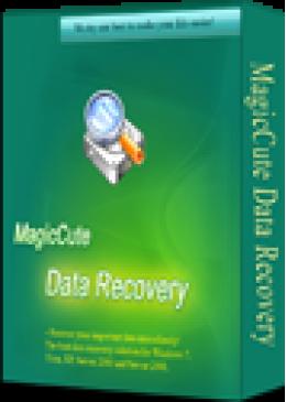 (CS) MagicCute Data Recovery License Key - 1 Year