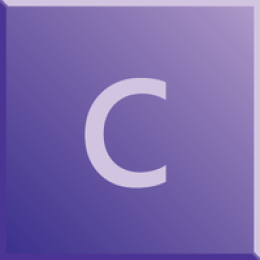Confidential Corporate 10 licenses bundle (1yr subscription)