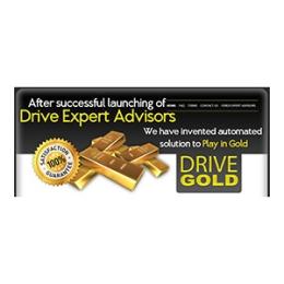 Drive Gold Silver 1 License