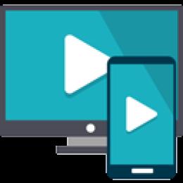 Einfache HTML5 Video - Enterprise License