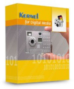 Kernel Recovery für digitale Medien