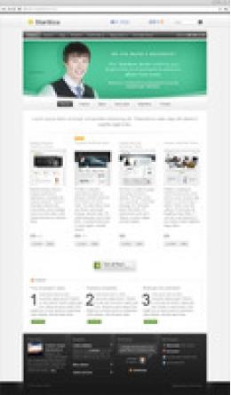 Starttica v.2 WordPress Theme - Extended Licence