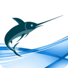 Swordfish Translation Editor - Site License (20 users)