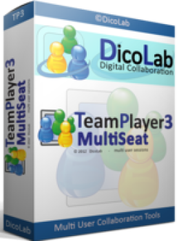 .TeamPlayer3-MultiSeat