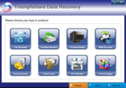 Triumphshare Data Recovery - 3 PC