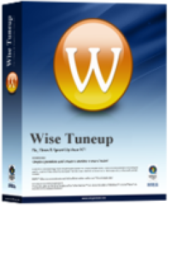 Wise Tuneup PC Support - Instant Plan - One Year/ One Computer