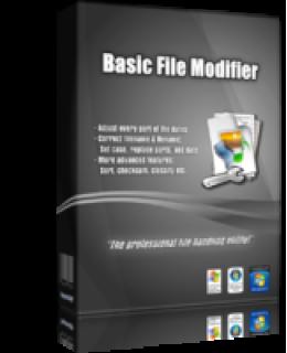 Basic File Modifier