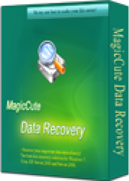 15% (CS) MagicCute Data Recovery License Key - 2 Years Coupon code