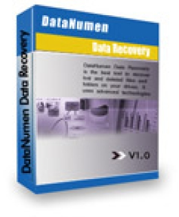 20% DataNumen Data Recovery Discount Code