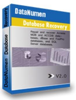 DataNumen Database Recovery 20% Promo Code