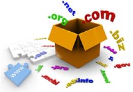 Domain Name Registration + Unlimited Web Hosting Package