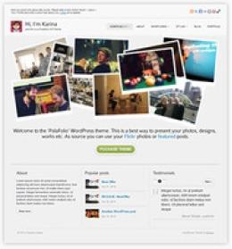 Polafolio WordPress Theme - Licencia Regular