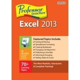 Professor Teaches Excel 2013