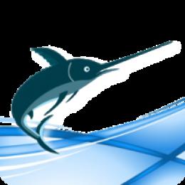 Schwertfisch Translation Editor - Site License (20 Benutzer)