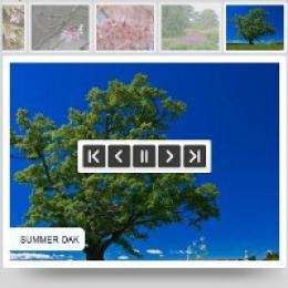 Visual Slideshow - Unlimited Websites